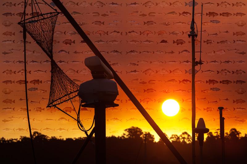 Fishery Sunset