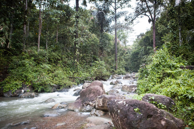 Kalimantan_Selatan_20150102_864