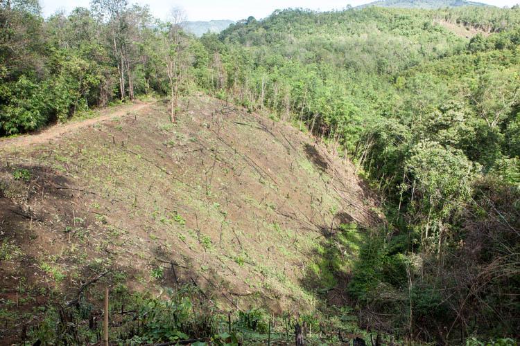 Kalimantan_Selatan_20150102_903