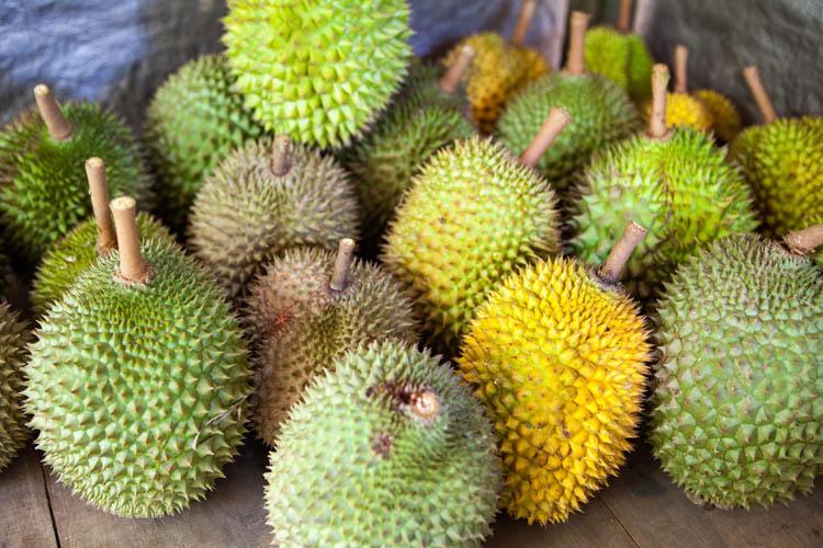 Tewang_Rangkang_Durian_20150215_013